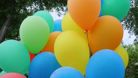 Colored helium balloons, festive colorful air balloons associated bundle, swaying in light wind blow, holiday. Accessories on nature, fastened balloons into stock video footage