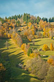 Colored hill. On a autumn day with blue sky Stock Image