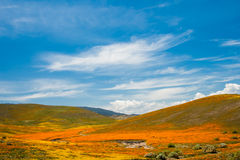 Colored Hills Stock Photo