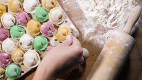 Colored homemade dumplings stock video