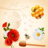 Colored Honey Composition Stock Photography