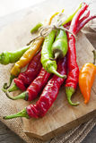 Colored hot chilli peppers on wooden chopper Stock Photos