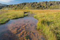 Colored hot river in Landmannalaugar NP, Iceland. Stock Photography