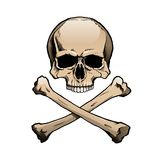 Colored human skull and crossbones Stock Photo