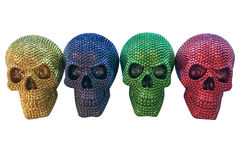 Colored human skulls isolated on white background Royalty Free Stock Images
