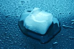 Colored ice cubes melted in water on reflection Royalty Free Stock Photos