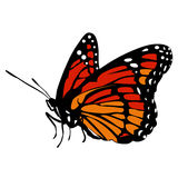 Colored icon beautiful black and red orange butterfly on a white. Background. pattern to decorate the scrapbook album page. vector illustration Royalty Free Stock Image