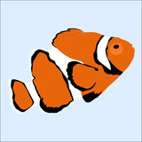 Colored icon of the marine aquarium orange fish cartoon on a blu Stock Photography