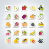 Colored icons of fruits. Set of colored icons of fruits with shadow.vector illustration stock illustration