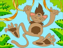 Colored illustration background of a monkey Royalty Free Stock Photos