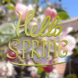 Colored illustration with chalk drawn  text ''hello spring'' on blurred background with blooming tree. Stock Images