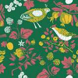 Colored illustration of leaves, fruits and birds. Colored illustration of leaves, berries on a green background Stock Photos