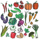 Colored inky vegetable sketches Royalty Free Stock Photo