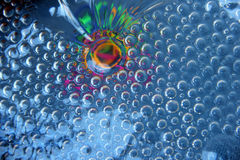 Colored iridescence under glass. Fluted glass on a colored background Royalty Free Stock Photos