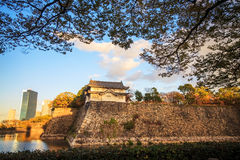 Colored Japanese maple leaf (Osaca castle) Royalty Free Stock Images