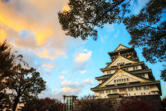 Colored Japanese maple leaf (Osaca castle) Royalty Free Stock Photo