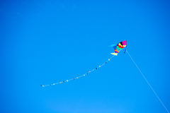 Colored kite held Royalty Free Stock Photo
