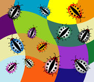 Colored ladybirds. Abstract illustration with colored ladybirds Stock Photos