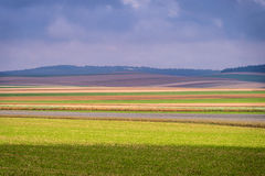 Colored layers in a field. Colors in a field in the Champagne region Stock Photo