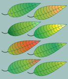Colored leaves. Abstract colored leaves on grey background - vector illustration Royalty Free Stock Photo