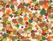Colored leaves. Autumn fall background with colored leaves royalty free illustration
