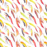 Colored leaves, feathers. Seamless autumn pattern. Watercolor - vintage style Stock Images