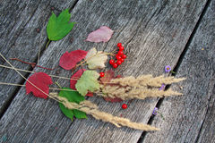 Colored leaves and red berries on wooden surface Royalty Free Stock Photography