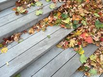 Colored leaves on stairs Royalty Free Stock Photos