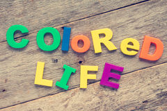 Colored life Royalty Free Stock Image