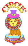Colored line art drawing of circus theme - lion in Royalty Free Stock Photo