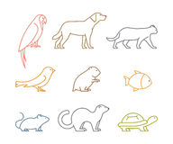 Colored line group of pets. Silhouettes animals. On white. Vector icons parrot, dog, mouse and hamster. Outline silhouette hamsters, canaries, cats and turtles Stock Photos