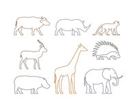 Colored  line set of african animals Stock Photos