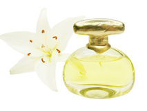 Colored luxury perfume Stock Photography