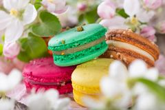 Colored macaroons Stock Photography