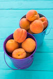 Colored metal buckets with apricots. Colored small metal buckets with fresh apricots stock photos