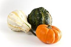 Colored mini pumpkins. A white, a green and an orange mini pumpkin Royalty Free Stock Image