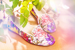 Colored moccasins among the leaves. & flowers Royalty Free Stock Photography