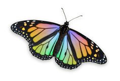 Colored Monarch Butterfly. With a clipping path Royalty Free Stock Images