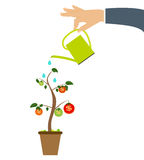 Colored Money Tree, Dependence of Financial Growth Flat Concept. Vector Illustration. EPS10 Stock Photo