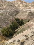 Colored mountains and trees at Badlands Stock Photo