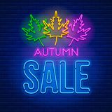 Neon sign Autumn Sale Stock Image