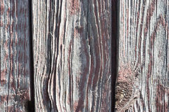 Colored Old wooden background. Background old dyed shabby texture wood with knots Stock Photos