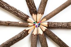 Colored original pencils. Colored original wooden pencils with wooden bark. Look like trees Royalty Free Stock Image