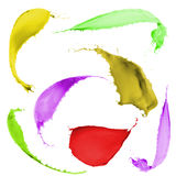 Colored paint splashes. Collection of colored paint splashes on white background Stock Photography