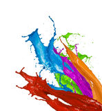 Colored paint splashes on white background. Colored paint splashes isolated on white background Royalty Free Stock Images