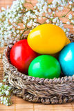 Colored painted eggs in a wattled basket with flowers Royalty Free Stock Photography