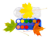 Colored paints and brushes for drawing isolated on Royalty Free Stock Photo