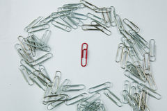 Colored Paper Clip among ordinary clips, which implies either it being a leader or a black sheep in group. Paper Clips arranged in messy way with isolated white Royalty Free Stock Photos