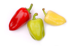 Colored paprika Stock Images