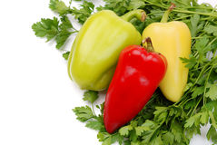 Colored paprika with parsley Royalty Free Stock Photography